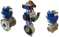 Johnson Valves